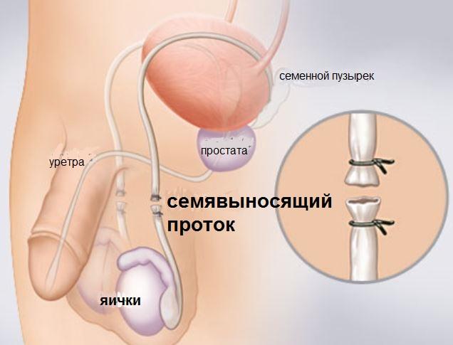АНДРОЛОГИЧЕСКИЙ ЦЕНТР - МОСКВА